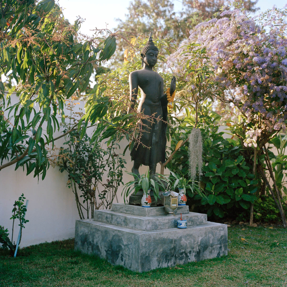 """""""Statue"""