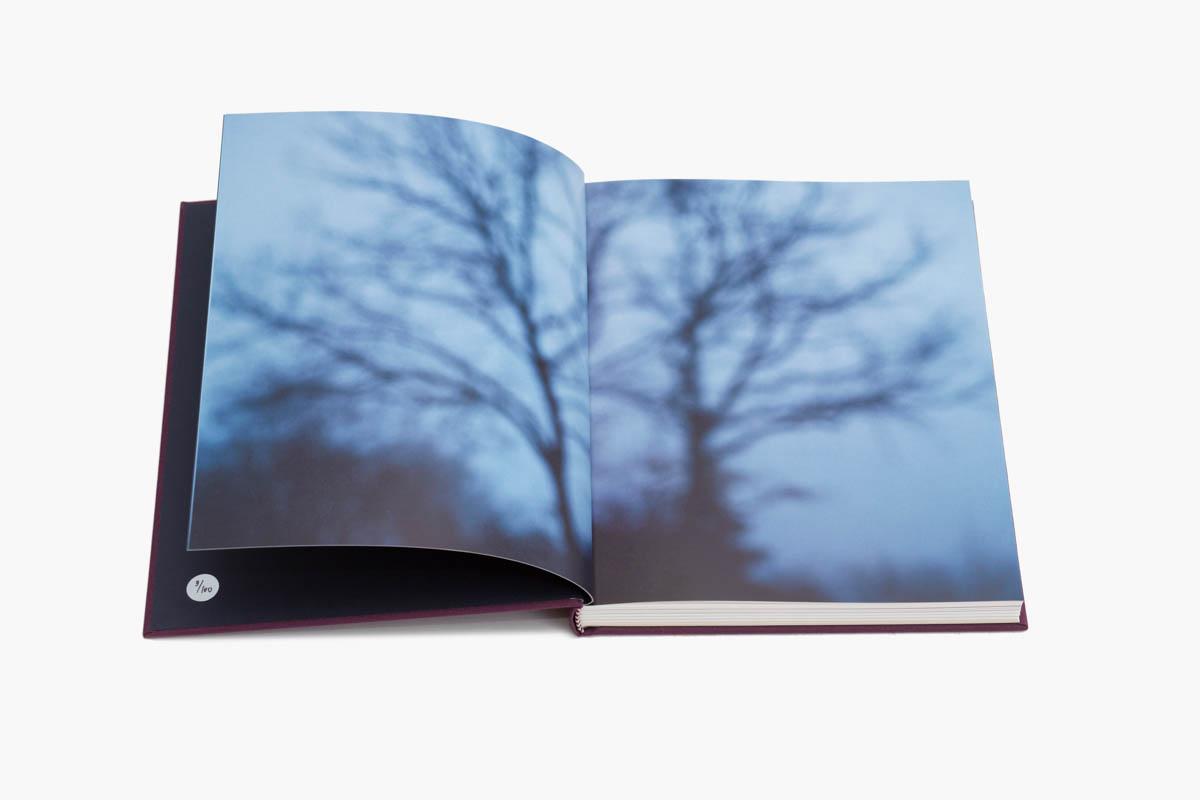 - Copyright © © S. Borcard - N. Metraux -