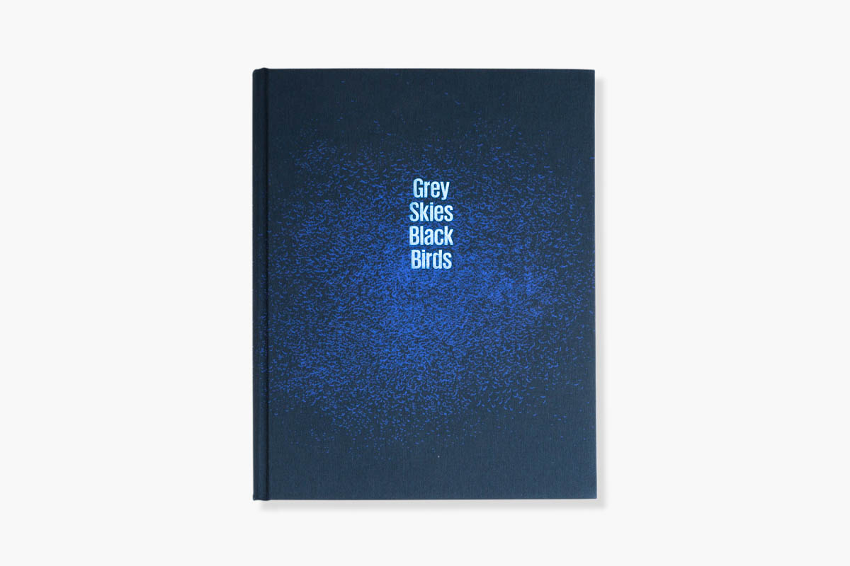 Grey Skies Black Birds - Cover of Grey Skies Black Birds Standard edition by Stéphanie Borcard & Nicolas Métraux - GOST books London. - Copyright © © S. Borcard - N. Metraux -