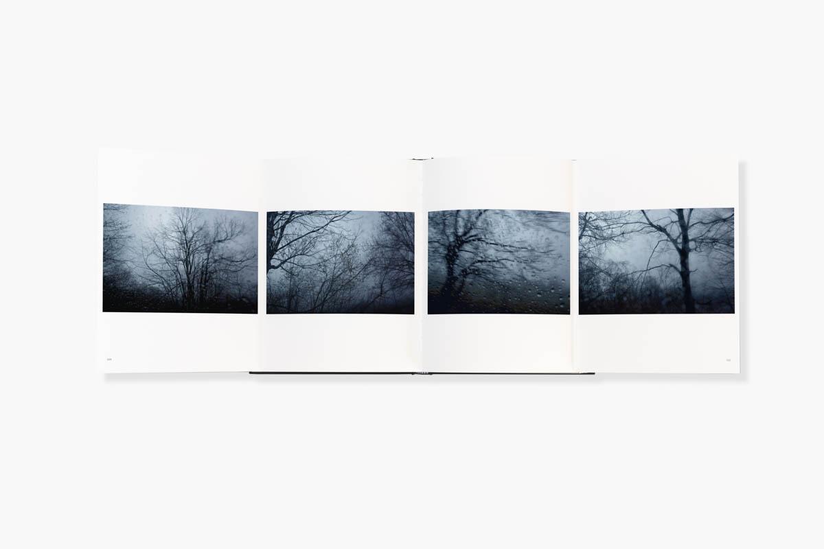 Grey Skies Black Birds - Pages detail of Grey Skies Black Birds by Stéphanie Borcard & Nicolas Métraux - GOST books London. - Copyright © © S. Borcard - N. Metraux -