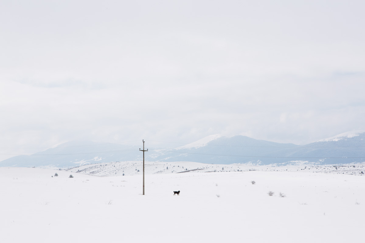 In the silent immensity of the plains - In the silent immensity of the plains. Once raging battles took place here.Kupres, March 2015 - Copyright © © S. Borcard - N. Metraux - Kupres - Federacija Bosne i Hercegovine - Bosnia and Herzegovina - (Map In the silent immensity of the plains)